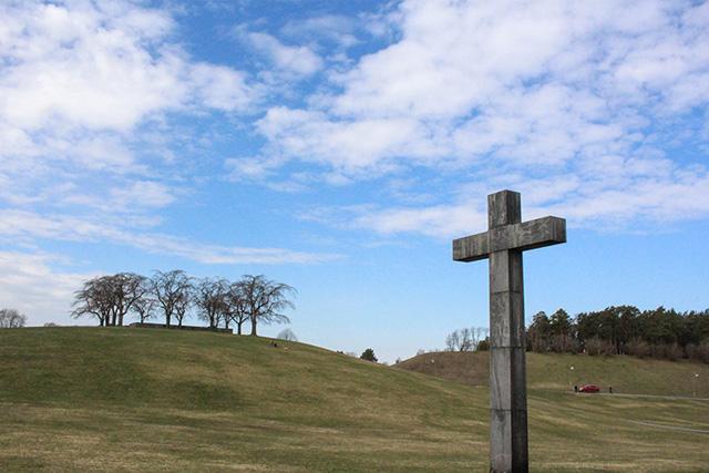 森の墓地巨大な十字架